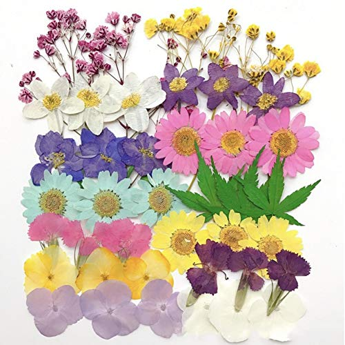 dried flowers for resin