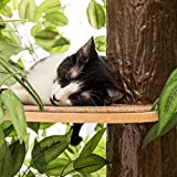 On2Pets CatHaven Cat Condo Furniture, Tree House