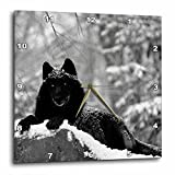 3dRose dpp_100280_3 Rocky Mountain Wolf, Black White-Wall Clock, 15 by 15-Inch
