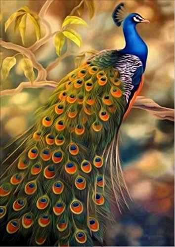 ShuoBeiter 5D Diamond Painting by Number Kits New DIY Diamond Painting Kit for Adults Cross Stitch Full Toolkit Embroidery Arts Craft Picture Supplies Home Wall Decor (Peacock) -