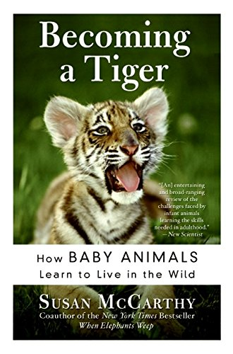 Becoming a Tiger: How Baby Animals Learn to Live in the Wild