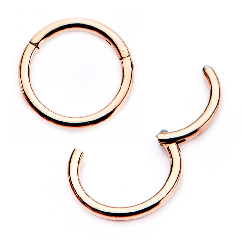 Pair of 316L Surgical Steel Hinged Segment WildKlass Rings