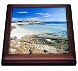 3dRose trv_81838_1''Greece, Halkidiki Peninsula, Karydi Beach Eu12 Phe0142 Paul Hellander Trivet with Tile, 8'' x 8''