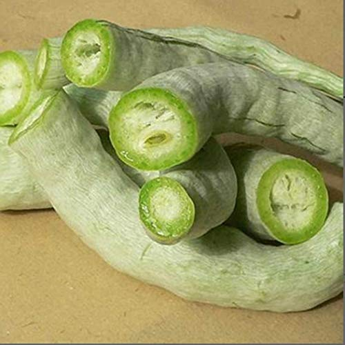 Iekofo Seed House- 30Pcs Snake Gourd Gourd Seeds,Perennial Bonsai Bonsai Outdoor Plant Seeds Flowers Ornamental Plant for Home Garden