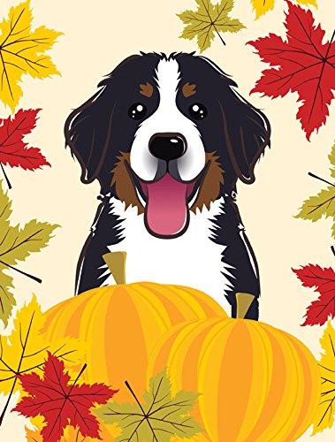 Bernese Mountain Dog Garden (Caroline's Treasures BB2043GF Bernese Mountain Dog Thanksgiving Garden Flag, Small, Multicolor)