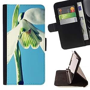 Momo Phone Case / Flip Funda de Cuero Case Cover - Planta Naturaleza Forrest Flor 2 - Apple Iphone 5C