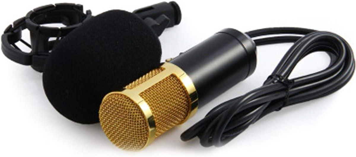 Copertura di Spugna,10 Pezzi Parabrezza del Microfono Microfono Schiuma Parabrezza Interviste per KTV Spugna Microfono Antivento,Spugna Microfono Antivento Spettacoli Teatrali Sala Conferenz,Aula