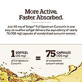 Solgar Full Spectrum Curcumin Liquid Extract