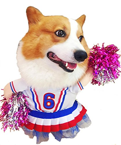 Dog Cheerleader Costumes (PetBoBo Pet Dog Cat Halloween Party Fancy Tidy Costume for Dog Cat Jacket Apparel - Cheerleader M)
