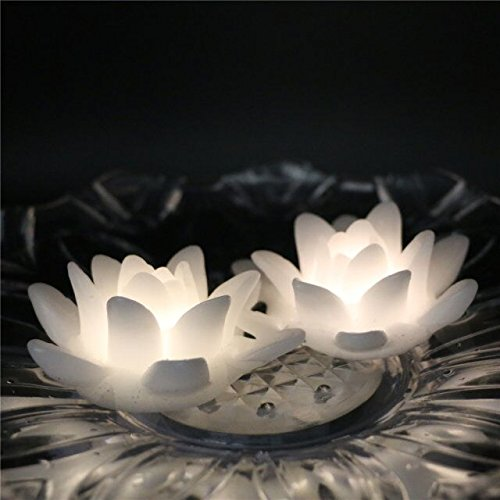 Floating Led Light Up Water Lily