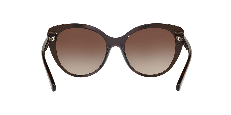 Sunglasses Coach HC 8259 553413 TAUPE LAMINATE