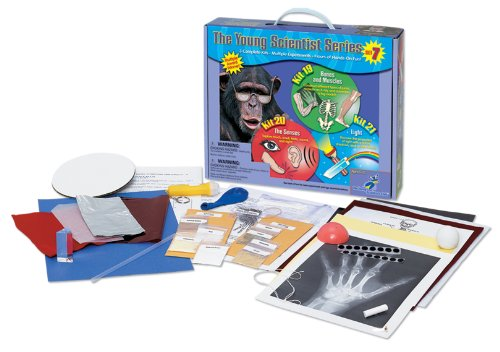 Muscle Series (Young Scientist Series - Set 7: Bones and Muscles (Kit 19) - The Senses (Kit 20) - Light (Kit 21))