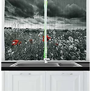 Ambesonne Floral Kitchen Curtains, Greyscale Poppy Field in Spring Time Blooming Flowers Grass Open Sky Photo, Window Drapes 2 Panel Set for Kitchen Cafe, 55 W X 39 L Inches, Dark Green Vermilion