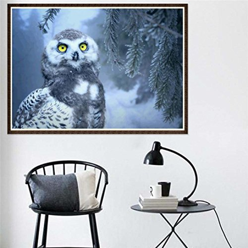 "Succeedtop DIY 5D Diamond Painting by Number Kits, Crystal Rhinestone Embroidery Paintings Pictures Arts Craft for Home Wall Decor,Winter Owl (Winter Owl, 3040cm/11.815.7"")"