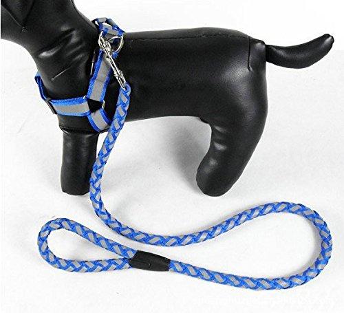 Dragonpad® Dog Pet Rope Slip Training Leash Pet Collar Traction Rope Large Size(Red)