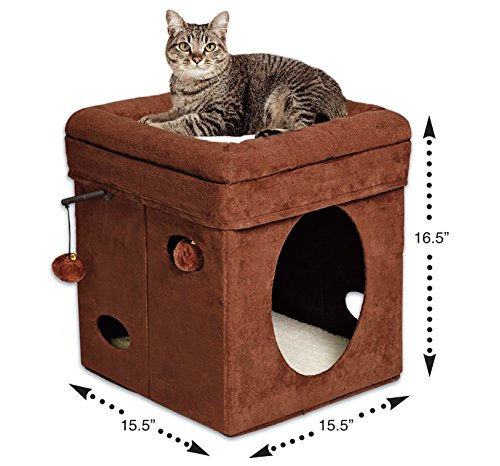 Curious-Cat-Cube-Cat-House-Cat-Condo