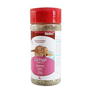 miju Hierba gatera Catnip Premium 30 g, Juguete de Hierba de Gato Seco, Rico en Fibra Vegetal, Vitamina C y Clorofila, para Mantener a tu Gato Vibrante