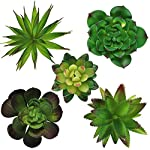 Hecaty-5-Pcs-Large-Size-Faux-SucculentsArtificial-Hanging-Ornaments-Fleshed-Plant-Textured-for-Home-Garden-Wedding-Party-Decoration