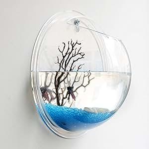 Wall mounted fish tank arylic wall aquarium for Fish bowl amazon