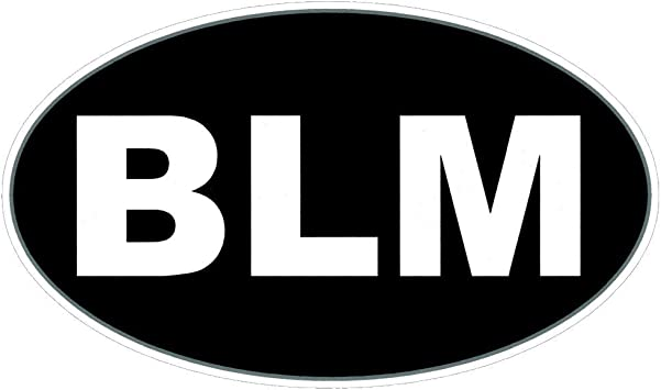 White Die Cut Blessed CarAutoTruck BumperWindshield FrontBackSide Window StickerDecal 23.5x3.5 inches