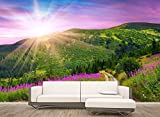 LHDLily Customized Wallpaper For Walls Wall 3D Wallpaper Pastoral Background Wall Photo Wall Murals Wallpaper 300cmX200cm