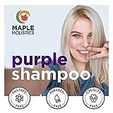 Purple Shampoo for Blonde Hair Toner - Sulfate Free Shampoo for Color Treated Hair plus Keratin Hair Treatment for Dry Damaged Hair with Jojoba Oil for Hair Growth - Blonde Shampoo for Brassiness