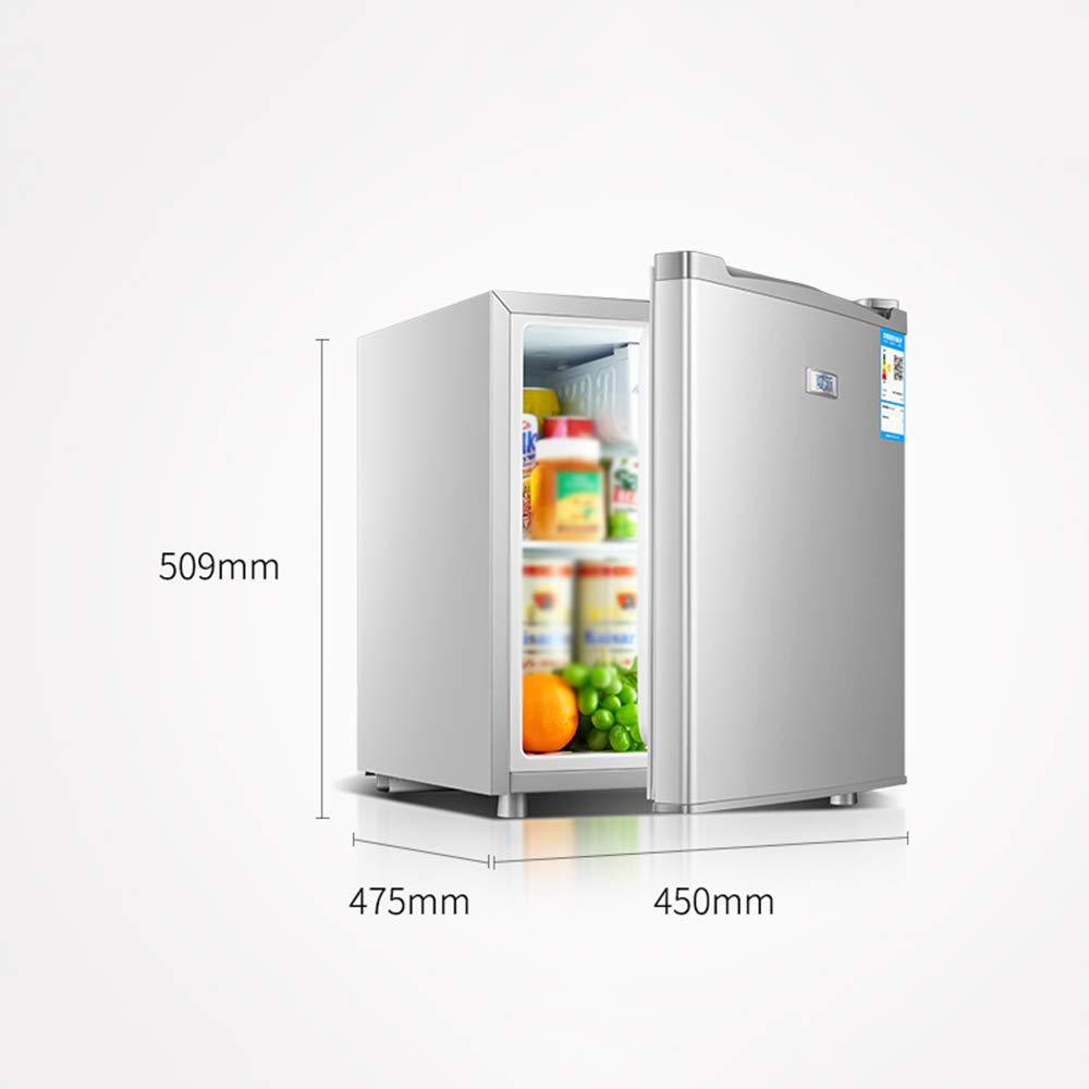 Refrigerador del Coche 50l Sola Puerta De Plata Congelador Casa ...