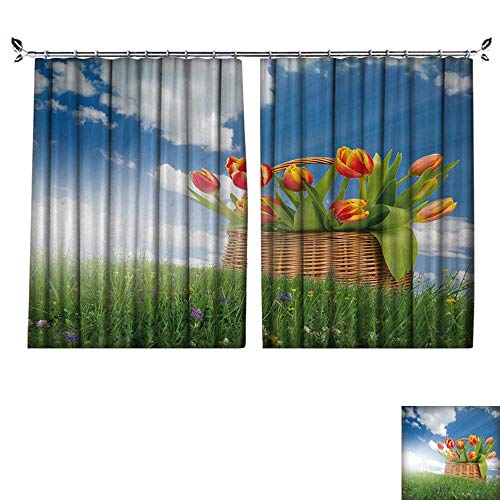 - DESPKON The Shade Block Ultraviolet Red Tulip Blooms in a Basket on Grass with Blue Sky for Bedroom, Living Room, for Shade. W63 x L63
