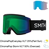 Amazon.com: Smith Optics Adult Squad Snow Goggles,Black ...