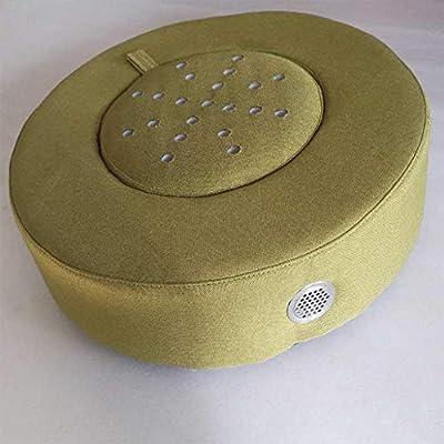 Moxibustión Cojín de asiento, cómodo Cojín de calefacción Moxa Caja Moxa Quemador Cojín Cuerpo Relajación Acupuntura Calor suave,Green: Amazon.es: Salud y cuidado personal