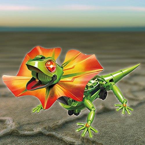 image Kit Robot Lézard Dragon Kingii solaire