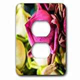 3dRose Danita Delimont - Flowers - Thailand, Chiang Mai, Flowers at the Thai Market Place - Light Switch Covers - 2 plug outlet cover (lsp_276974_6)