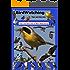 Bird Watching Tips and Secrets