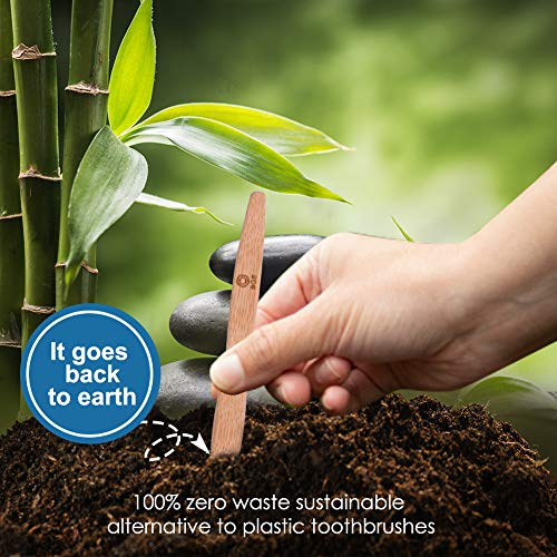 Bamboo Toothbrush,Biodegradable Organic Natural Bamboo Charcoal Toothbrush,Soft Nylon Bristles,BPA Free,Ergonomic Handle for Sensitive Gums,Set of 6 (White)