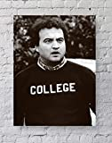 LLp John Belushi, College Poster Standard Size | 18-Inches by 24-Inches | Animal House Movie (John Belushi, College) Wall Poster Print