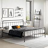 Dhp Folding Beds - Best Reviews Guide