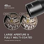 Goetland 3-9x40 Lunettes de Visée Optique R4 Réticule Tactique en Croix Chasse avec Montures 11