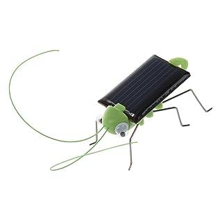 SODIAL(R) Saltamontes Alimentado por Solar. Colocalo en el sol y ver que las piernas se zangolotean y menean