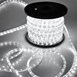 Katop Flexible 100' LED Crystal Clear PVC Tubing Rope Light Indoor/outdoor Boat Decorative Party Christmas Holiday Business Restaurant Light Kit 110v/60hz Customizable Length (Cool White)