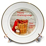 3dRose Lens Art by Florene - Food and Beverage - Image of Country Apples with Teddy Bears and Grandmas Words - 8 inch Porcelain Plate (cp_295138_1)