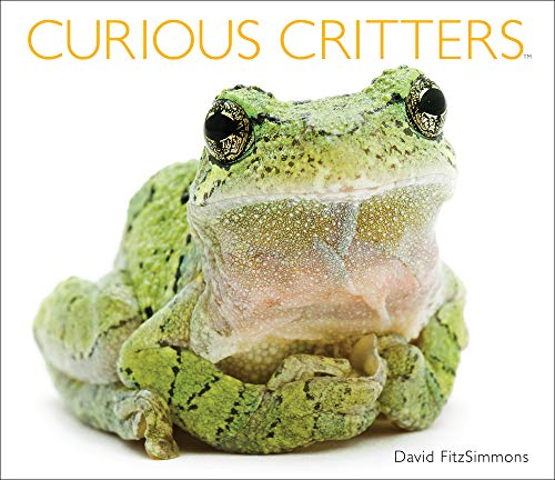 (Curious Critters)