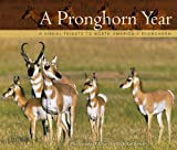 A Pronghorn Year, Dick Kettlewell, 1560376015