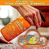 ANGRY ORANGE 24 oz Ready-to-Use Citrus Pet Odor