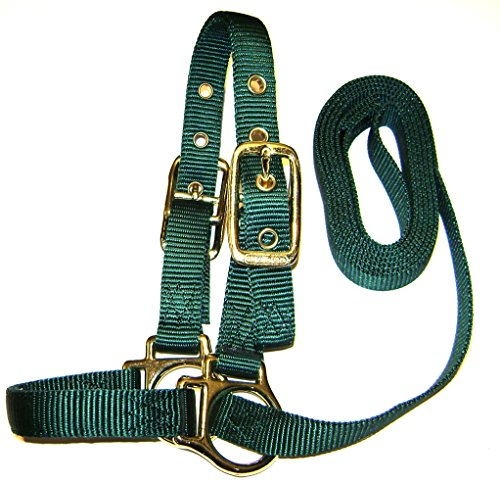 Hamilton Sheep Show Halter with Lead, 3/4-Inch by 5-Feet, Dark Green