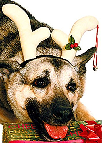 Christmas Rudolf Costume Reindeer Antlers for Pet Dog -