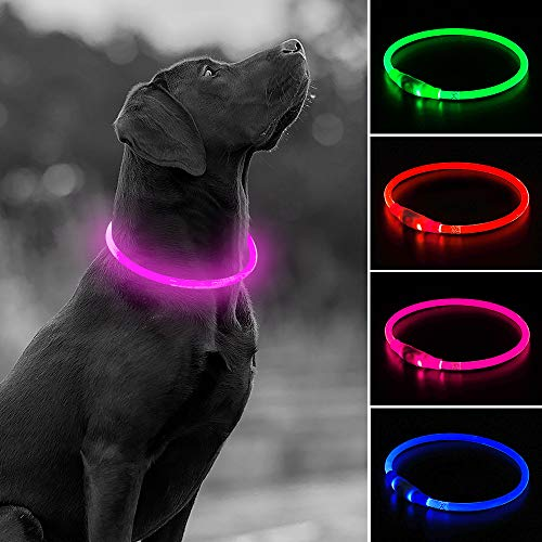 Rechargeable Flashing Cuttable Collars Nighttime