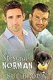 Free eBook - Stormin  Norman
