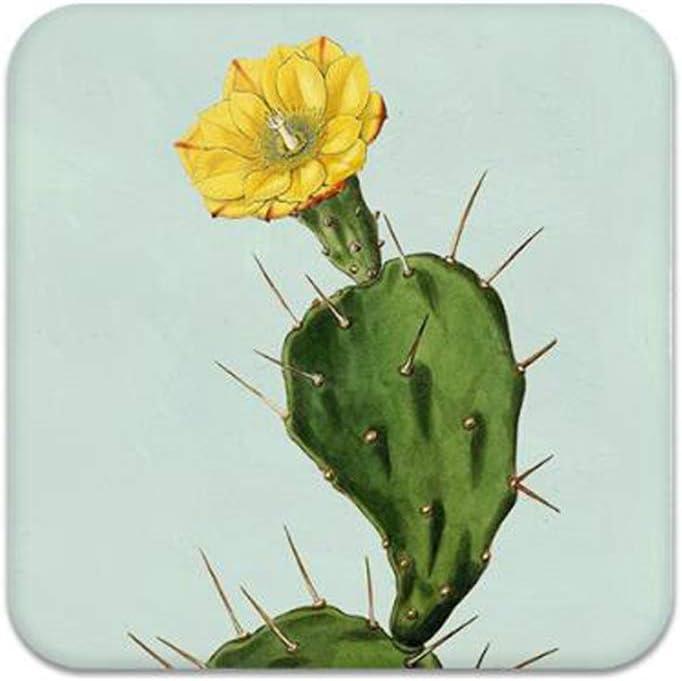 VOANZO 2PCS Diatomita Cuadrada Antideslizante Aislante Posavasos Decoración del hogar Cactus Cup Mats para cantimploras Bebidas Posavasos para el hogar (10 x 10 cm)