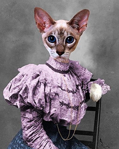Victorian Siamese CAT LADY portrait woman altered kitty anthro art print