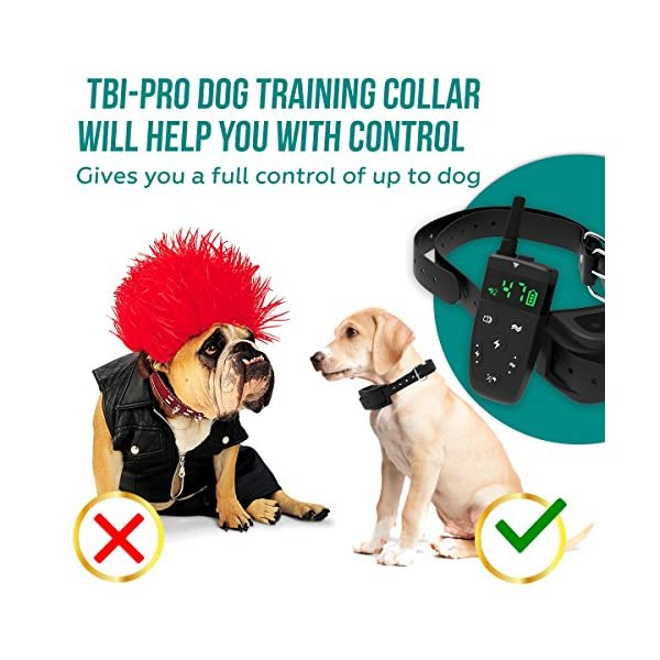[Upgraded 2020] Dog Training Collar with Remote - Shock Collar for Dogs Range 1600 feet, Vibration Control, Rechargeable Bark E-Collar - IPX7 Waterproof for Small, Medium, Large Dogs, All Breeds 6